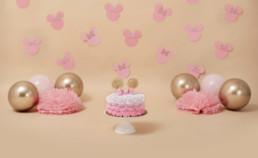 Cake Smash Theme - Minnie Mouse